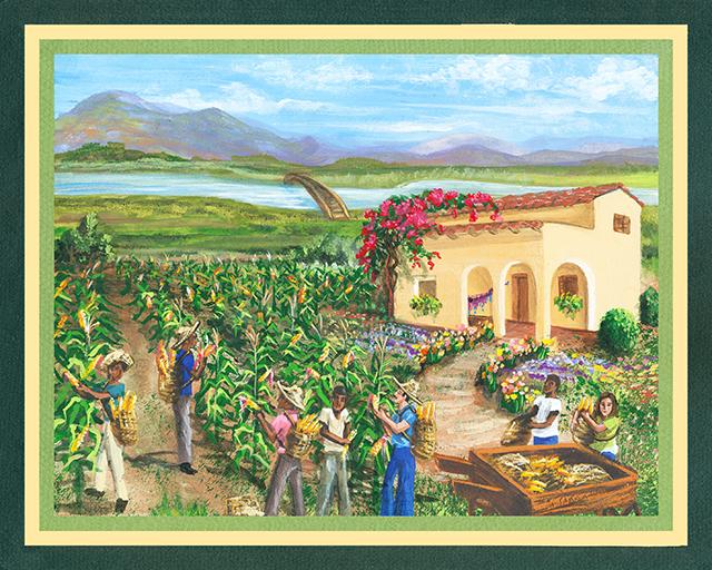 An Abundant Harvest 01