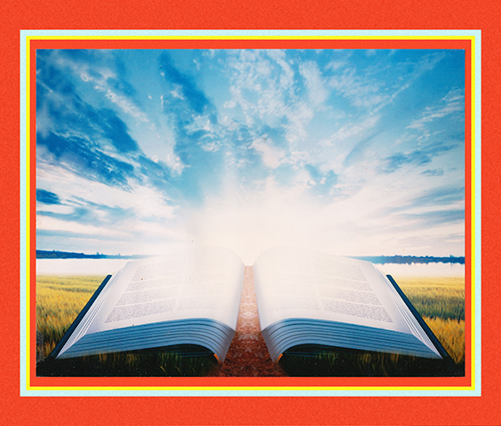 Delight in God's Word 16